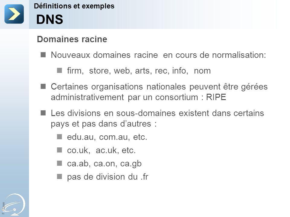 31-Mar-17 Définitions et exemples. [Title of the course] DNS. Domaines racine. Nouveaux domaines racine en cours de normalisation: